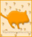 Rennmaus-Quiz