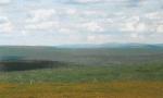 Welche Landschaft liebst du?