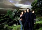 Lehrer auf Hogwarts