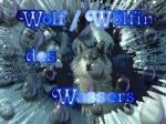 Zu welchem Element gehörst du, als Wolf?
