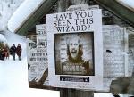 Wie steht Sirius zu Harry?