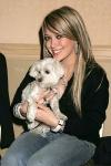 Welche Haustiere hat Hilary?
