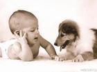 Fühlst du dich zu Tieren allgemein mehr hingezogen als zu Menschen?