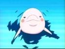 Wie heißt der kleine Delphin in Episode 5 der 1. Staffel?