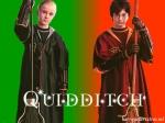 James Potter war auch Sucher bei Gryffindor.