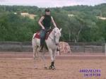 Aus welchen Klassen setzt sich die Horsemanship- Prüfung zusammen?