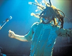 Bist du ein Bob Marley Fan?