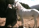 Wie heißt das Pferd, dass Gandalf schließlich von König Theoden geschenkt bekommt?