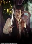 """Was meint Frodo damit """"Wir sind losgezogen um das Auenland zu retten. Es ist gerettet, aber nicht für mich""""?"""