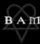 Welche ist Bams Lieblingsband?