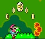 Wie nennen sich die Münzen mit Yoshi's Gesicht darauf, von denen es in jedem Level 5 zu finden gibt?