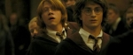 Warum streiten sich Harry und Ron?