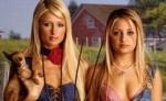 In welcher Fernsehserie spielt Paris Hilton mit?