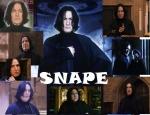 Wie heisst Severus Snapes Mutter?