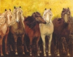 Welche Farben können Pferde nicht unterscheiden?