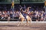 Wie nennt man den Pferdesport bei dem Turn- und Gymnastikübungen allein oder in der Gruppe auf dem Pferd ausgeführt werden?