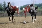 Wie nennt man eine Art Basketball zu Pferde?