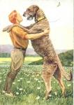 Welche Rasse gilt mit gelegentlich bis über 100cm Schulterhöhe als der größte Hund der Welt?