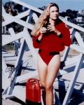 In welcher Folge wird Jill von einem Hai angefallen und lebensgefährlich verletzt?