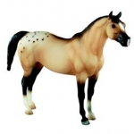 Wie ist dein Name von diesem Pferd hier?
