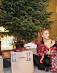 Wer schmückte den Weihnachtsbaum bei Kerima?