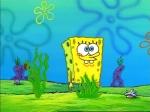 Wie kann Spongebob fliegen?
