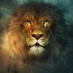 Der Löwe heißt Aslon.