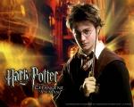 Wie sollen Harry Ron und Hermine, Sirius nennen wenn sie über ihn sprechen?