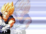 Wie heißt die Potara-Fusion von Vegeta und Son Goku?