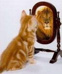 Zur Einleitung: Wie lange stehen Sie in der Regel vor dem Spiegel?