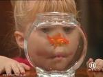"""Wie heißt der Fisch, den Michelle aus Versehen getötet hat (in der Folge """"Eine fischige Angelegenheit"""")?"""