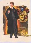 Welche Zaubertrankingredienz wirft Ron Weasley aus Wut in Draco Malfoys Gesicht?