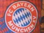 Stimmt es, dass der FC Bayern Thorsten Fink als Amateurspieler einsetzt?