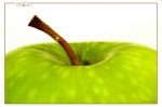 Wozu ist der Stiel des Apfels da?