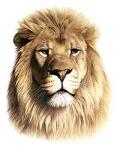 Wie heißt der Löwe?