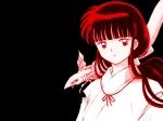 Suchst du auf dem Internet Leute die auch Inuyasha schauen?