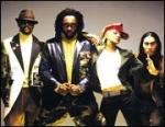 Wie lautet die gängige Abkürzung der Black Eyed Peas?