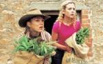 Welche Plage befällt Drovers Run und die umliegenden Farmen?