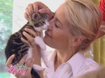 Kater Minou heißt wie eine Katzenfuttermarke