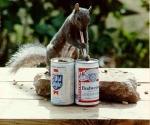 Dein Eichhörnchen geht seinen Opa und seine Oma besuchen....
