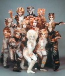 Cats- Das Musical