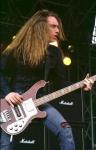 Metallica... Bist du Fan?