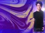 Daniel Radcliffe-Bist du ein Kenner?