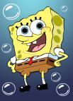 Wie viele Löcher hat Spongy vorne?