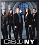 Wer gehört nicht zu CSI (alle CSI's)?