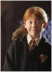 Harry Potter PROFI Quiz