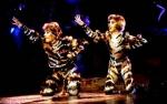 Das ultimative CATS-DVD Quiz!