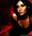 Wie heißt die neue Show von Shannen die im August 2006 ihre Premiere hat?
