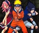 So, um warm zu werden, ein paar einfache: Wie gross sind Naruto, Sakura und Sasuke?