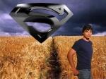 Welche weibliche Smallville-Darstellerin bist du?